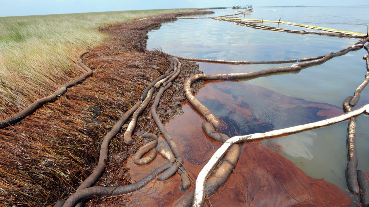 5 environmental consequences of oil spills thoughtco - 1200×720