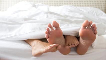 Vier Füße