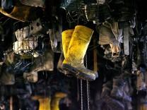 Kompletter Steinkohle-Ausstieg bis 2029 kostet 20 Milliarden Euro