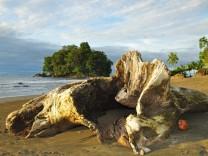 Leser schicken Fotos Nuqui Kolumbien