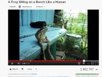 Sitzender Frosch