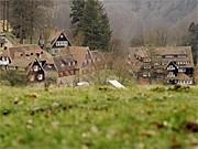 Odenwaldschule, dpa