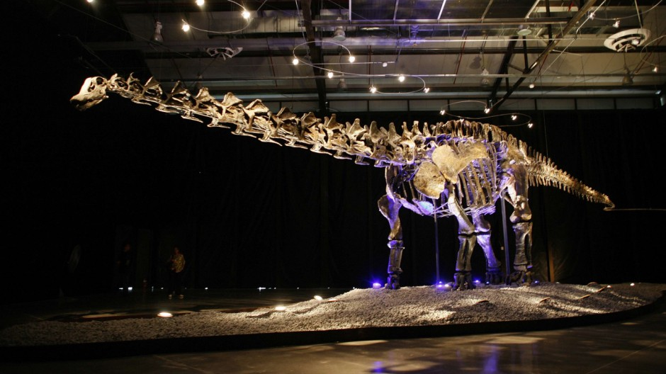 Visitors look at the skeleton of an Apatosaurus named 'Einstein' displayed at the Lewis hall in Fundidora park in Monterrey