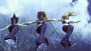 Nixen, Meerjungfrauen im Weeki Wachee State Park, Florida