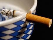 Volksbegehren, Nichtraucherschutz; Foto: ddp
