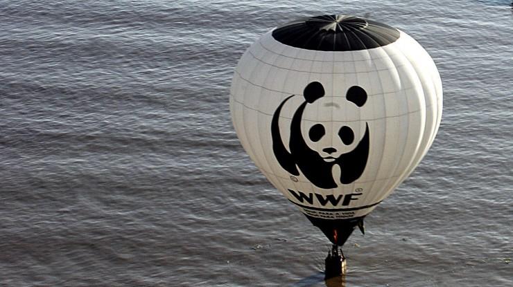 """WWF Gerichtsurteil zu """"Schwarzbuch WWF"""" erwartet"""