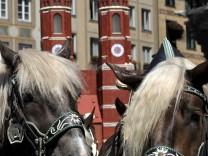 Wallfahrer-Gottesdienst mit Pferde-Segnung