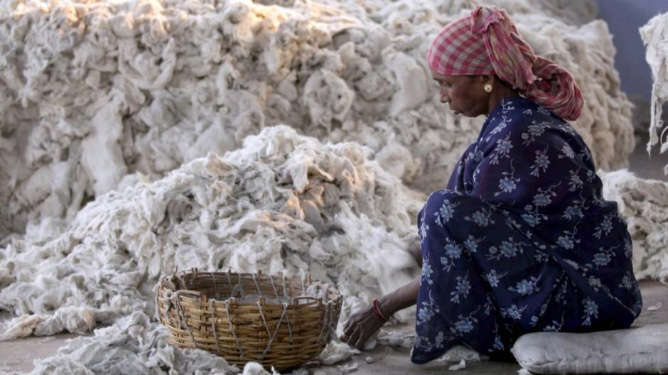 Baumwolle in Indien