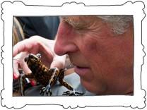 Prinz Charles als Namensgeber von Froschart