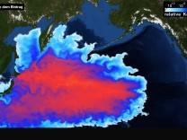 Ausbreitung des radioaktiven Wassers von Fukushima-1