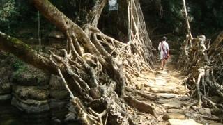 Meghalaya, Indien, Asien