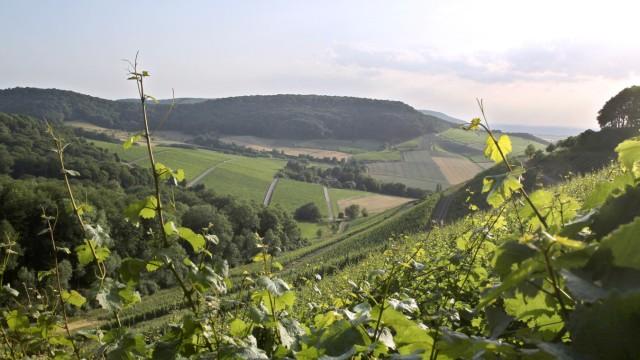 Schönster Ausblick auf unterfränkische Weinberge gewählt