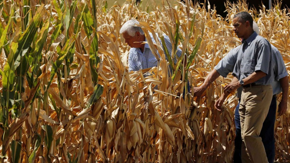 U.S. President Obama walks around the McIntosh family farm with owners to view drought-ridden corn fields in Missouri Valley