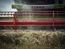 Hessische Bauern beklagen schleppende Getreideernte