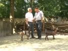 20120802_Summa_-Spezial_Wettbewerb2