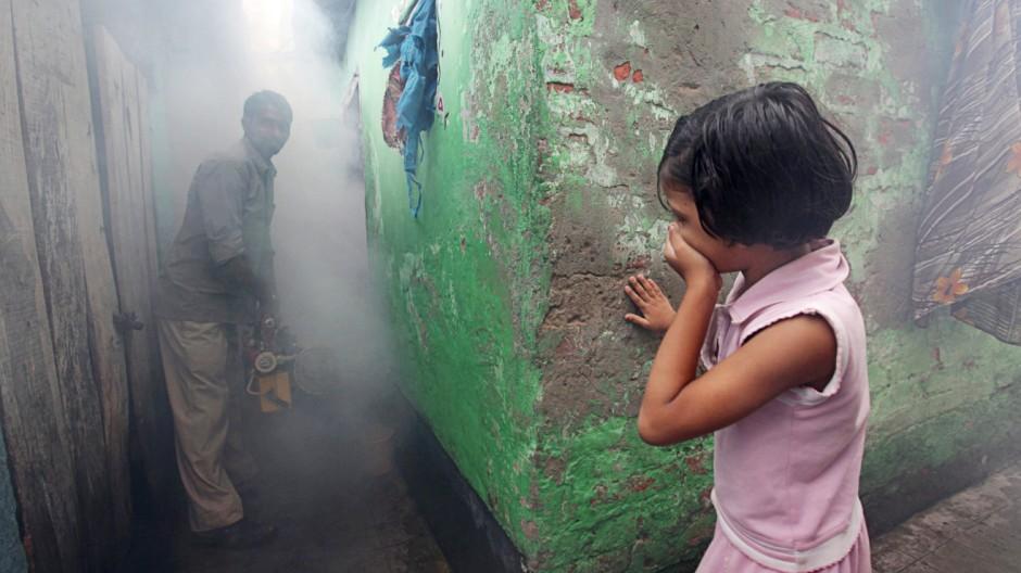 Malaria and Dengue infections in Calcutta