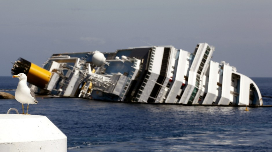 A seagull in front of the wreckage of capsized cruise liner Costa Concordia near the harbour of Giglio Porto