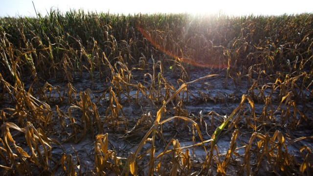 Drought Afflicting Much of the US Midwest