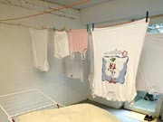 schimmelbildung in waschkeller ; ddp
