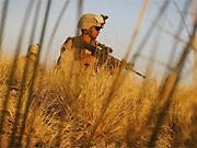 Afghanistan, AP