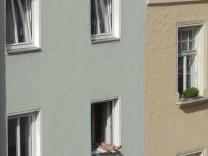 Sonnenbad am Fenster