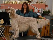 Deutschlands beste Hundfriseurin