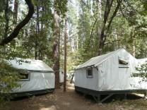 Mitten in ... Yosemite