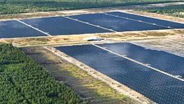 Solarpark Leberose, Foto: Reuters
