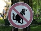 hund_hundehaufen_verbotsschild_pa