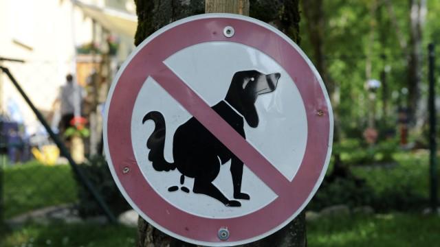 Hinweisschild mit Hund