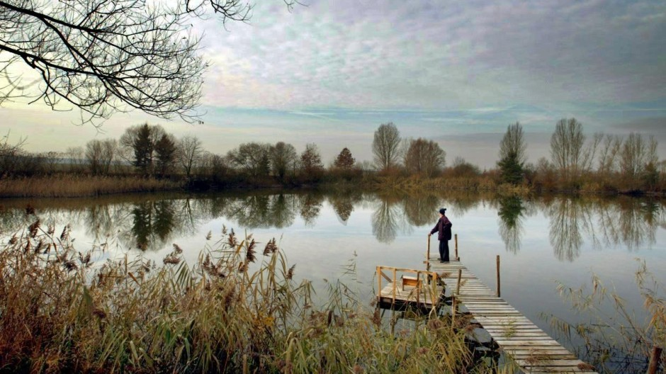 Novemberstimmung an einem See bei Dettelbach in Unterfranken, 2003