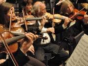 Geigenspieler; dpa