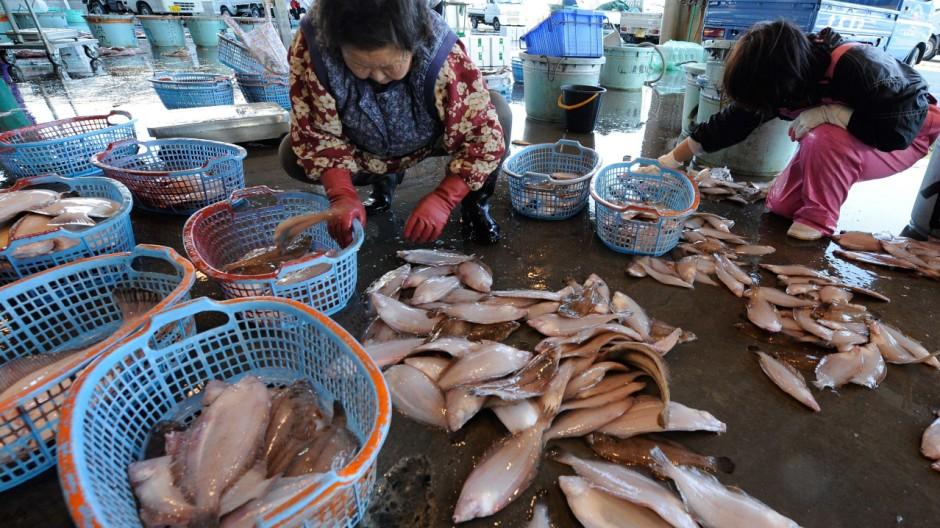 Ein Fischmarkt in Japan