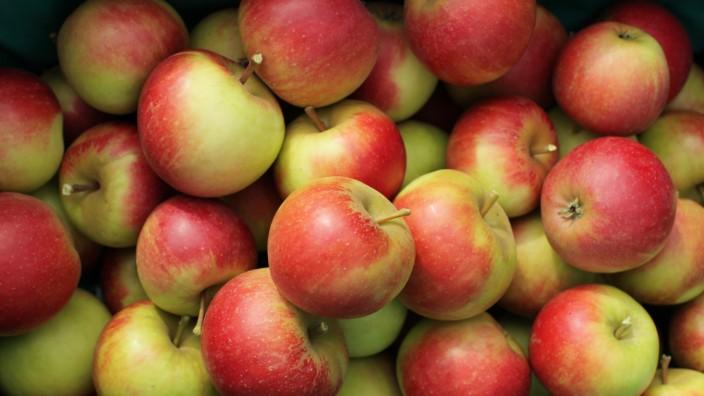 Apfel Äpfel Ernährung Einkaufen