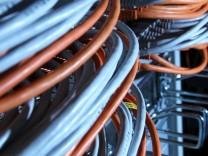 Die Bundesregierung möchte die Daten von Unternehmen besser schützen - in der digitalen Welt gelten Geschäftsgeheimnisse als bedrohte Art.