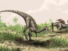 """""""Nyasasaurus parringtoni"""""""