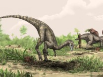 Artist rendering shows Nyasasaurus parringtoni, either the earliest dinosaur or the closest dinosaur relative yet discovered