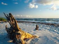 Gefrorene Wellen und einsame Weite - Der Winter auf dem Darß