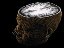 Intelligenz als Maß geistiger Leistungsfähigkeit gibt es eigentlich nicht, sagen kanadische Forscher. Zu diesem Schluss kommen sie aufgrund ihrer Online-Tests und von Hirn-Scans.