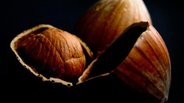 Harte Schale, guter Kern: Nüsse sind wahres Kraftfutter