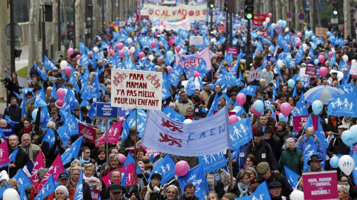 Demonstrators against gay marriage, adoption and procreation assistance gather in the streets of Paris