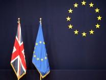 Großbritannien und die EU, David Cameron