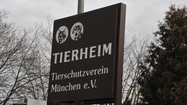 Tierschutz Tierschutzverein München