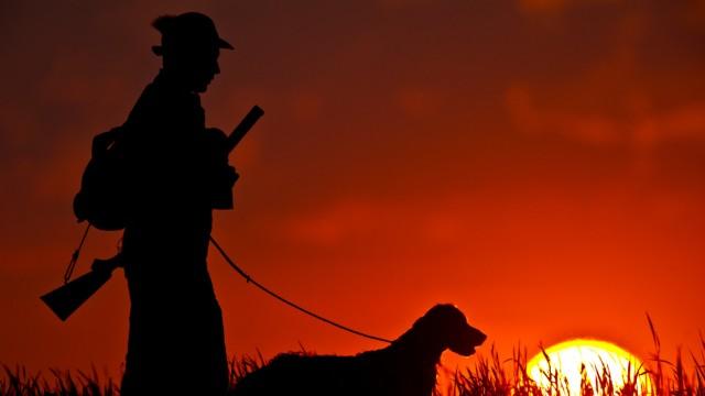 Jäger wollen weiter Lockfutter für Schwarzwild