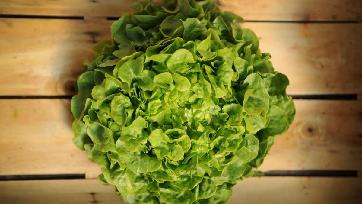 vegane ern hrung vs fleischkonsum da haben wir den salat gesellschaft s. Black Bedroom Furniture Sets. Home Design Ideas