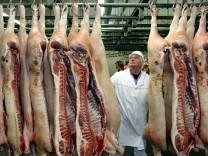 ist der Mensch von Natur aus Fleischfresser?