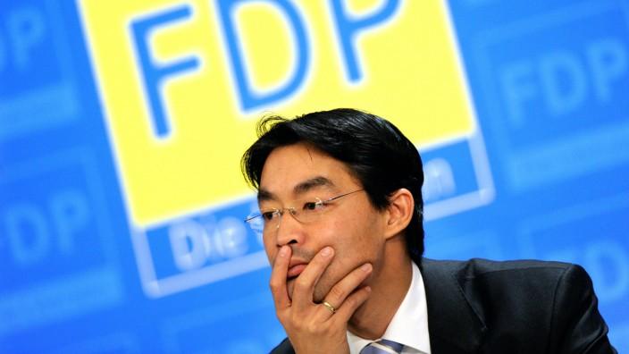 FDP Homo-Ehe Lebenspartnerschaft Gleichstellung