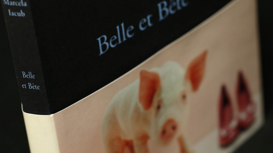 An illustration picture taken in Paris shows the new book 'Belle et Bete'(Beauty and Beast) by author Marcela Iacub