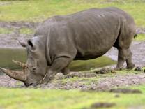 Themenpaket Artenschutz