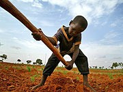 Land in Afrika, Reuters